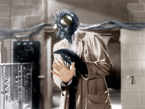 David Hedison as The Fly