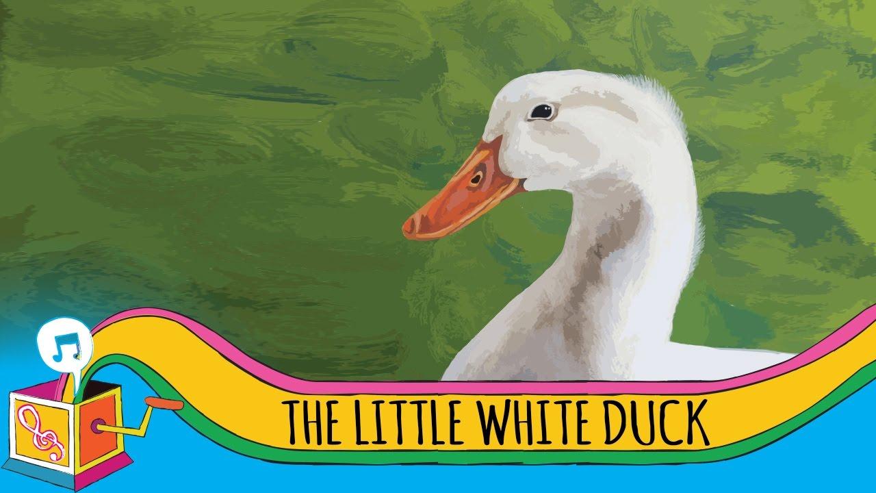 Song lyrics toLittle White Duck