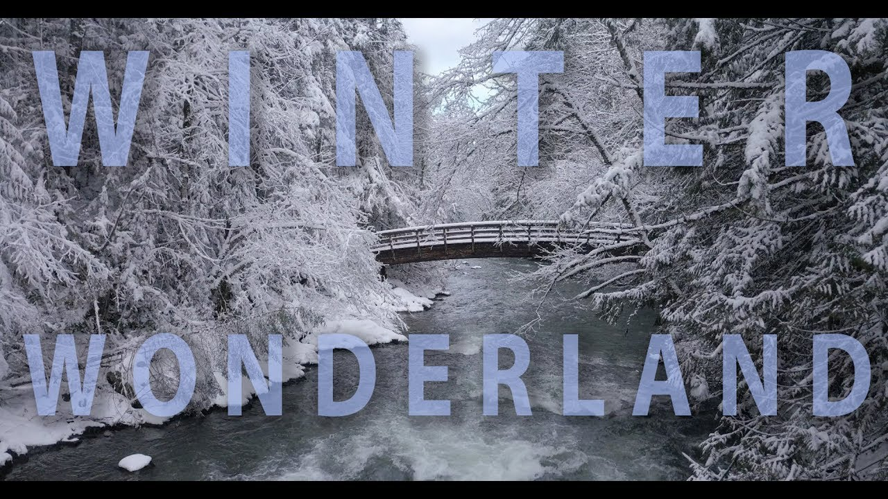 Song lyrics to Winter Wonderland