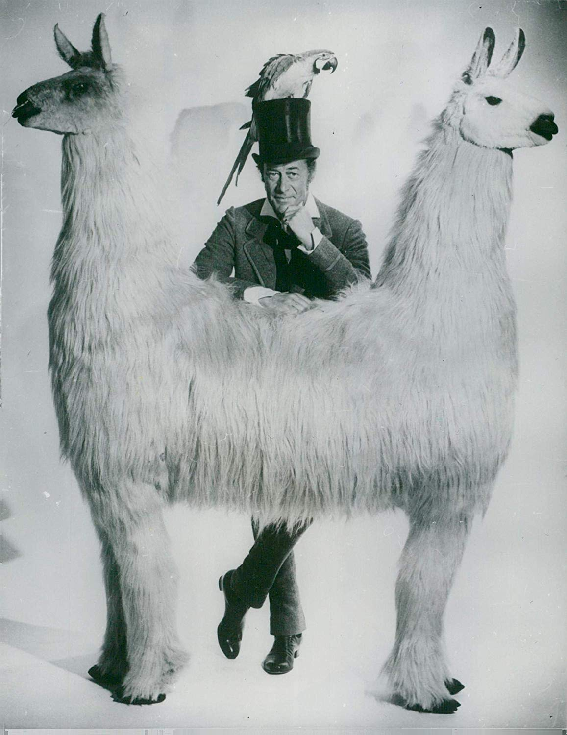 Song lyrics to I've Never Seen Anything Like It, Written by Leslie Bricusse, Performed by Richard Attenborough in Doctor Dolittle
