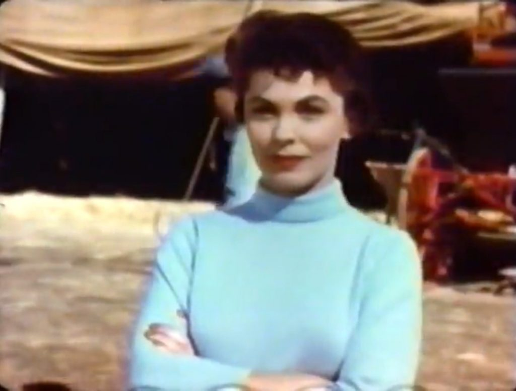 Joanne Dru as the owner of the circus