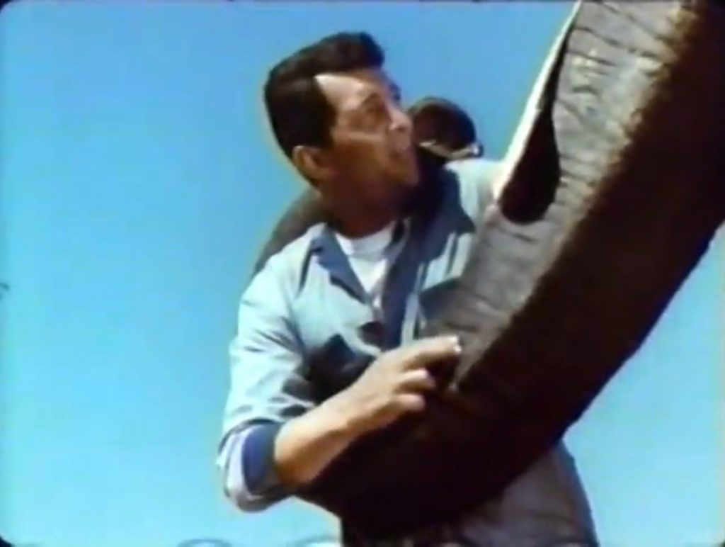 Dean Martin lifted up by and elephant